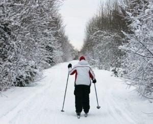 Cross Country Skiing near Fox Creek Inn